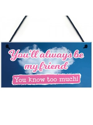 You'll Always Be My Friend Friendship Gift Hanging Plaque Sign
