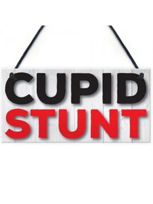 Cupid Stunt Funny Man Cave, Home Bar, Shed, Pub Hanging Plaque