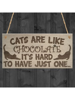 Cats Are Like Chocolate Funny Pet Diet Gift Wood Hanging Plaque