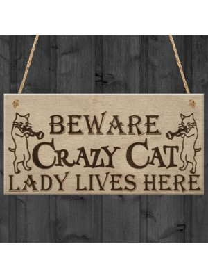 Crazy Cat Lady Cute Funny Gift Idea Animal Lover Hanging Plaque