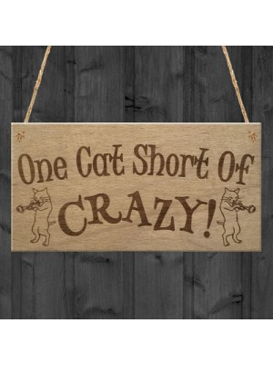 Cat Short Of Crazy Funny Kitten Cat Friendship Hanging Plaque