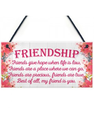 Friend Is You Friendship Best Friends Love Gift Hanging Plaque