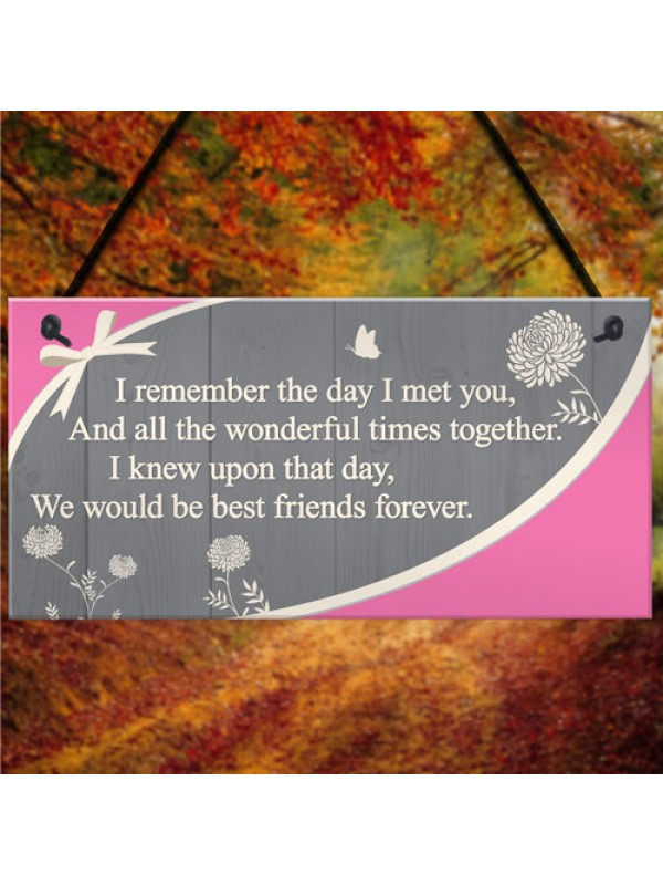 Friendship Sign Wood Hanging Heart Best Friend Plaque Thank You