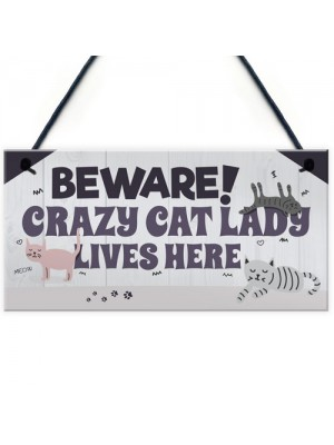 Funny CRAZY CAT LADY Hanging Plaque Animal Lover Sign Cute Gift