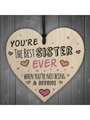 Best Sister Wooden Heart Friendship Plaques Funny Birthday Gifts