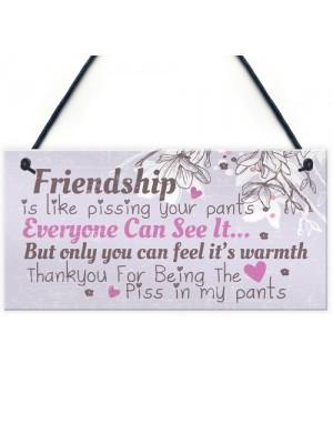 Friendship Sign Funny Birthday Keepsake Gift Hanging Wall Plaque