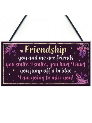 Funny Friendship Sign Hanging FRIEND Plaque Birthday Christmas