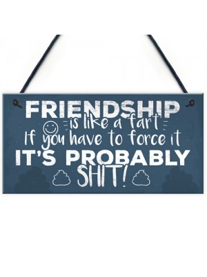 Funny Friendship Sign Novelty Best Friend Plaque Birthday Gift