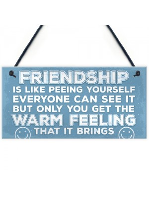 Novelty Best Friend Sign Friendship Funny Rude Gift Novelty Sign