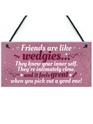 Novelty Funny Best Friend Birthday Christmas Gift Plaque Gifts