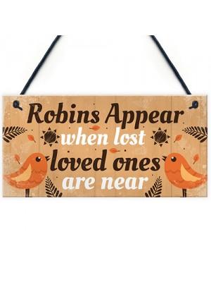 Handmade Robin Memorial Bereavement Garden Hanging Plaque