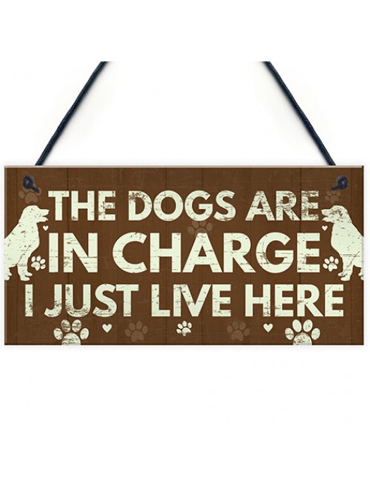 Funny Dog Gift For Dog Lovers Dog Sign For Home Novelty Birthday