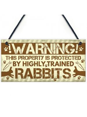 Beware Of The Rabbit Sign Bunny Rabbit Door Sign Hanging Plaques