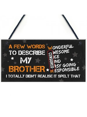 FUNNY Gift For Your Brother Hanging Plaque Birthday Gift For Him