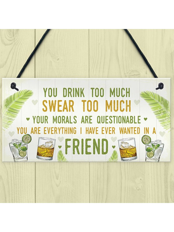Funny Best Friend Friendship Sign Drink Too Much Alcohol Gift