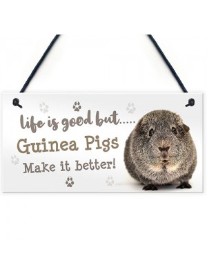 Guinea Pig Sign Handmade Gift Sign For Guinea Pig Owners