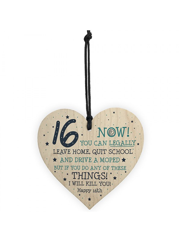 Funny 16th Birthday Gift Hanging Wood Heart Daughter Son Gifts