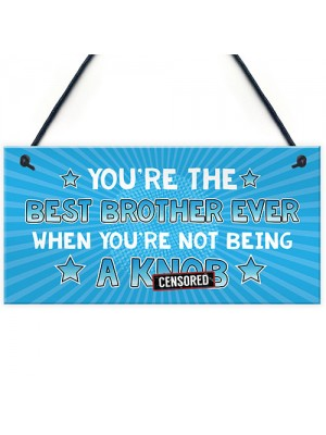 Funny Brother Gift Rude Gift From Sister Sign Gift For Him