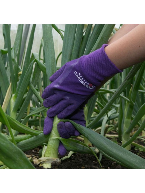 Town & Country Master Gardener Gloves - Small Mens Aubergine