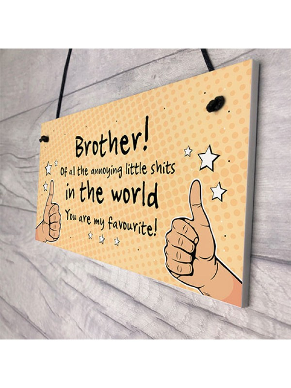 Brother Gift For Him Funny Brother Birthday Christmas Gift