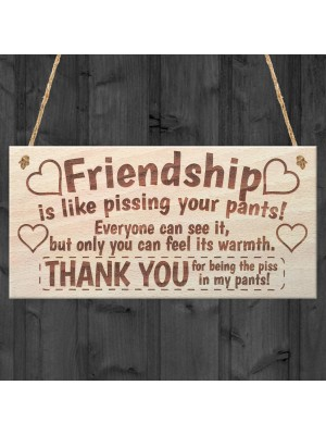 Friendship Funny Poem Wooden Plaque Gift