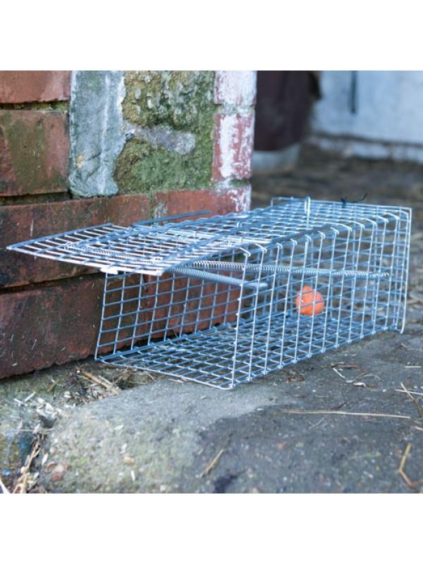 Humane Rat Trap Live Animal Catcher No Poison Cage Pest Control