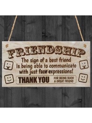 Friendship Best Friends Face Plaque Hanging Sign Gift