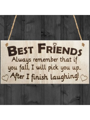 Best Friends I Will Pick You Up When I Finish Laughing! Plaque