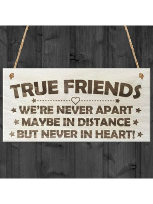 True Friends Never Apart Cute Wooden Hanging Plaque Gift Sign