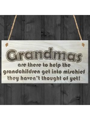 Grandmas Funny Grandchildren Wooden Hanging Plaque Gift Sign