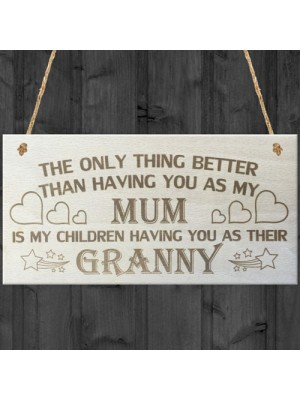 My Children Having You As Their Granny Love Gift Plaque Sign