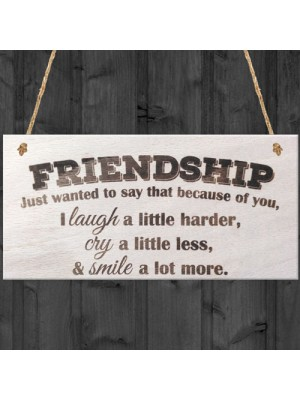 Friendship Laugh Cry Smile Wooden Hanging Plaque Best Friends