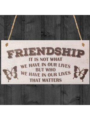 Friendship Not What But Who Wooden Hanging Plaque