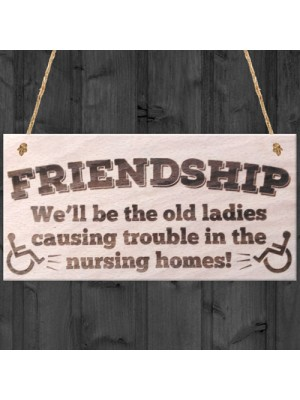 Friendship Old Ladies Causing Trouble Novelty Wooden Plaque