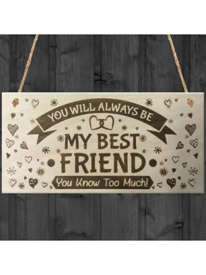 You Will Always Be My Best Friend Wooden Hanging Plaque