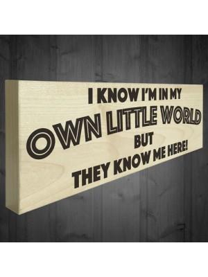 My Own Little World Wooden Freestanding Novelty Plaque