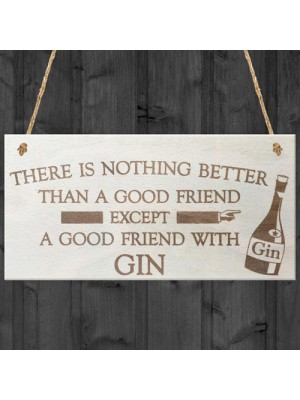 Good Friend With Gin Novelty Wooden Hanging Plaque Gift