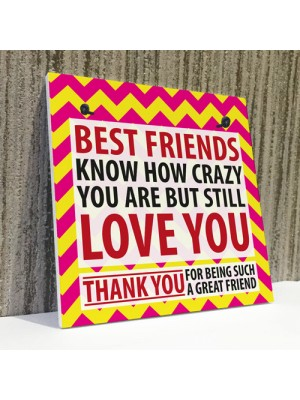 Best Friends Crazy Christmas Home Friendship Gift Hanging Plaque