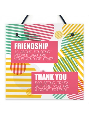 Crazy Friendship Sign Best Friend Hanging Plaque Thank You Gifts