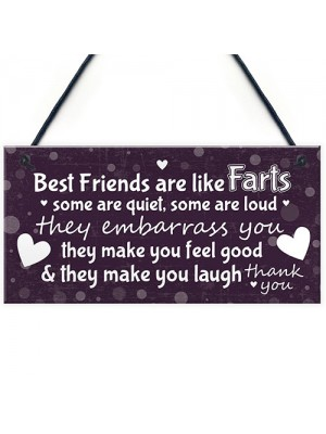 Funny Gift For Best Friend Birthday Christmas Sign Friendship